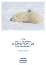 <h5>Arctic Matriarch V325</h5>