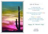 <h5>Cactus Sunset V45</h5>