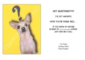 <h5>Chihuahua Question V18</h5>