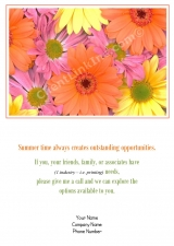 <h5>Colorful Daisies V234</h5>