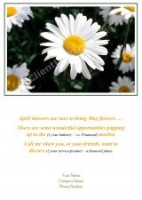 <h5>Daisy Mae V229</h5>