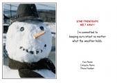 <h5>Frosty Face V23</h5>