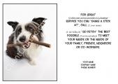 <h5>Good Dog V19</h5>