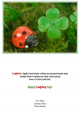 <h5>Lucky Lady Bug V30</h5>