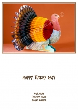 <h5>Paper Turkey V200</h5>