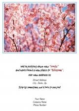 <h5>Pink Blossoms V124</h5>