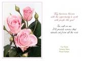 <h5>Pink Roses V230</h5>