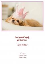 <h5>Puppy Princess V79</h5>
