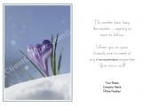 <h5>Signs Of Spring V444</h5>