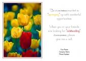 <h5>Tulip Dance V232</h5>