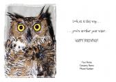 <h5>Yellow Eyed Owl V68</h5>