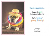 <h5>June Card</h5><p>Bulldog Aloha V143</p>